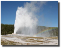 Old Faithful im Yellowstone National Park