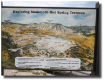 Mammoth Hot Springs Terrace